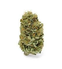 Buy Marijuana online,mail order weed online,buy weed online USA,weed for sale USA, Buy Cannabis Online, Buy Weed Online, La Germination, Adhd Symptoms, Honey Colour, Amnesia, Medical Marijuana, The Cure, Stuff To Buy