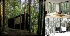 The Half Tree House Is Like No Tree House You Have Ever Seen