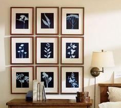 sunprint kit (make your own art with plants + the sun)