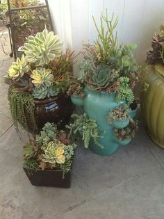 Beautiful arrangements of cactus Succulents In Containers, Container Plants, Cacti And Succulents, Planting Succulents, Container Gardening, Succulent Landscaping, Succulent Gardening, Succulent Terrarium, Outdoor Plants