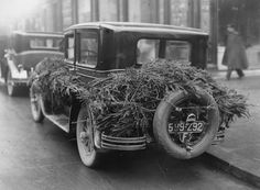 If the year 1930 had Pinterest, this decoration idea would be all the rage.