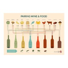 Pairing Wine + Food...and a bunch of other wine infographics. I like these better than what's in the wine textbook for culinary school at least!