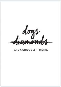Dogs Are A Girls Best Friend - Funny Dog Quotes - The post Dogs Are A Girls Best Friend appeared first on Gag Dad. Cavalier King Charles, Girls Best Friend, Best Friends, Dog Best Friend Quotes, Mans Best Friend, Crazy Friends, Foto Blog, Crazy Dog Lady, Golden Retriever
