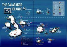 Galapagos Island #galapagos #ecuador #travel