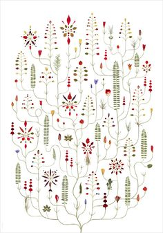 January Tree / Tree illustrations made if real plant parts, pressed and digitilized. By  Lotta Olsson.