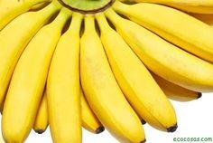 Los nombresplátano,banana,banano,cambur,topochoyguineohacen referencia a un gran número deplantasherbáceasdel géneroMusa. Básicamente el plátan