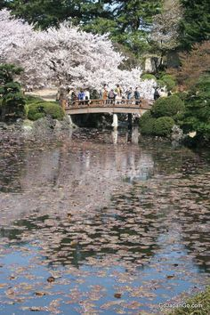 In Kyoto: I would love to go there and look at the sights