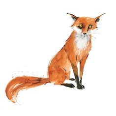 Animal Illustration - www.becky-brown.com