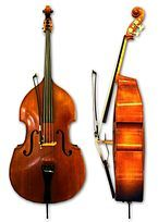 """The bass is sometimes called the """"Double Bass,"""" """"Upright Bass,"""" """"Bass Violin"""", """"Contrabass,"""" or """"String Bass"""" —they're all the same instrument. Violin Family, Tango, Instrument Sounds, Double Bass, Oboe, Guitar Strings, Cello, Musical Instruments, Rock And Roll"""
