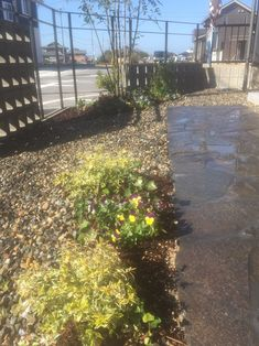 オリジナルアイアンフェンス ・ お庭に合わせオリジナルのアイアンフェンスもご提案していますよ♪ 是非ご相談下さい! ・ 『おしゃれ庭時間。』 大好きな花苗を植えたり、水をあげたり、、お気に入りの庭で過ごす時間。そして、そんな素敵な空間をARTCRÉERがご提案します。 ・ Garden&Design  ARTCRÉER  #ガーデン #デザイン #グリーン #フラワー #外構 #作庭 #おしゃれ庭時間 #庭#20  #アールクレエ#0120666770 #Garden#Design#gardener#Green#flower#iron#zakka#20#It'sSPECIALDAY!#ARTCRÉER#Shiga#Nagahama