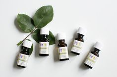 The Pinterest 100: Essential oils are back on the rise. Brew them on the stovetop or drop them into a defuser to fill your home with happiness.