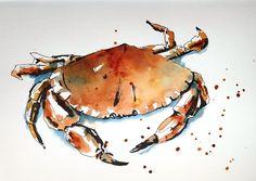 BB-Aquarelle: Dans le sable / In the sand. Beach Watercolor, Pen And Watercolor, Watercolor Animals, Watercolor Paintings, Watercolors, Crab Painting, Sand Painting, Crab Art, Fish Art