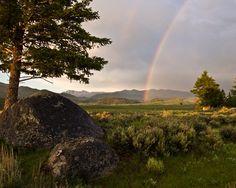 Yellowstone's Pot o' Gold