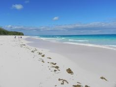 Airport Beach, Eleuthera Bahamas, not another person in sight!!
