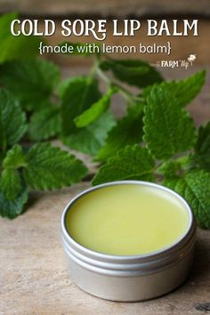 Cold Sore Lip Balm {made with lemon balm} Lemon balm is a powerful antiviral that has been proven to fight cold sores. Use this DIY lemon balm lip balm recipe to help fight and prevent cold sores or for everyday use when lips are chapped and dry. Herbal Remedies, Health Remedies, Natural Remedies, Natural Treatments, Natural Cold Sore Remedy, Healing Cold Sore, Natural Healing, Natural Medicine, Herbal Medicine