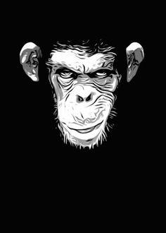 monkey chimp chimpanzee skull face evil grin digital illustration Animals
