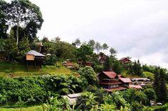 9 Best Hotel For Wedding In Thane Ideas Hotel Best Hotels Thane
