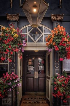 Nice flower baskets two a closer crop Nice flower baskets a pub in Tottenham Court Road London. Flower Basket, Amazing Flowers, London England, Britain, Nice, Paisajes, Best Flowers, Nice France, London