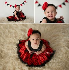 lady bug cake smash black white and red tutu