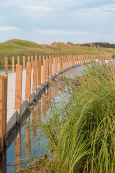 Prince Edward Island, Canada is definitely an underrated destination. Check out these great photos of Prince Edward Island to see why. Yoho National Park, National Parks, East Coast Canada, Pei Canada, Photos Of Prince, All I Ever Wanted, Arctic Circle, Prince Edward Island, Quebec City