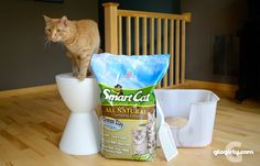 Feeling Super Smart with SmartCat Litter -  and a GIVEAWAY for YOU!