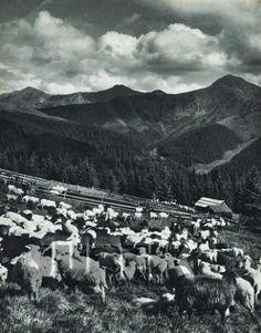 Folk, Photographs, Mountains, Retro, Nature, Travel, Life, Folklore, Naturaleza