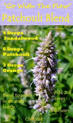 What to use Patchouli for: Deodorant (because of its strong and lasting smell) Bug Repellent Acne Dry skin Oily skin Inflammation Stress Scars