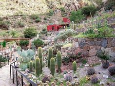 Argentina - Appropedia: The sustainability wiki Latin America, South America, Southern Cone, Cactus, Chile, Sustainability, Spanish, Museum, Plants