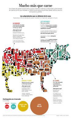 Mucho más que carne - De la faena del ganado vacuno deriva, gracias a técnicas modernas y tradicionales, gran variedad de materias primas que mediante su transformación industrial permiten obtener valiosos insumos farmacéuticos y textiles. Los subproductos que se obtienen de la vaca Representan el 12% de la producción vacuna. El producto con mayor valor agregado es el cuero.