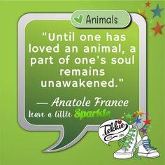 We love ! Anatole France, Our Love, Hug, Animals, Animales, Animaux, Animal, Cuddle, Animais