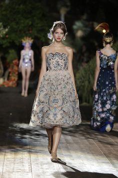 miau : Photo Dolce & Gabbana