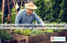 Create Your Own Organic Garden In Your Backyard