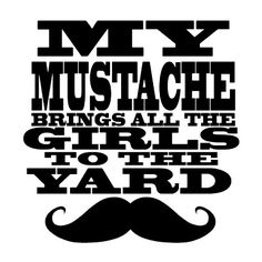 My mustache brings all the girls to the yard.
