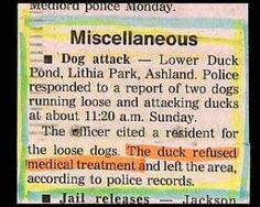 Duck refuses medical aid