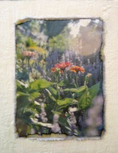 """""""Zinnias"""" Encaustic wax and mulberry paper. 8""""x10"""""""