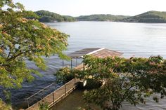 Springtime at the Lake of the Ozarks with mimosas in bloom.   https://www.facebook.com/ShopLakeOzarks