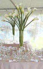 White Calla Lily and Beargrass in a Trumpet Vase.