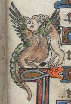 eadfrith:  The Alphonso Psalter - A Lion and a Dragon do battle on folio 12r Sometimes known as the Tenison Psalter. Origin is likely Westminster or London, England - Dated to 1284-1316 Add MS 24686; Images from the British Library Manuscript Website. http://www.bl.uk/manuscripts/FullDisplay.aspx?ref=Add_MS_24686