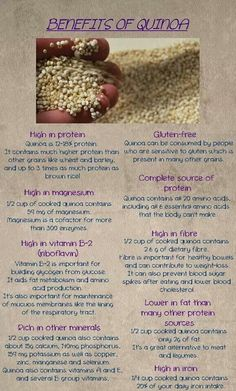 Recently, the superfood quinoa has received a lot of attention, so I decided to look into the benefits of quinoa and try it myself. What is quinoa? Quinoa, though popularly thought of as a grain or… Nutrition Education, Nutrition Plans, Nutrition Tips, Health And Nutrition, Health Tips, Diet Tips, Quinoa Nutrition, Nutrition Month, Nutrition Activities