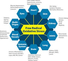 Protandim - Reduce your Oxidative Stress by an average of and interrupt the rapid aging and disease process! Hundreds of diseases are linked to oxidative stress. don't take my word for it, check it out on pubmed. Stress Free, Retinal Degeneration, Kangen Water, Bone And Joint, Circulatory System, Alkaline Diet, Lunges, Anti Aging, Health And Wellness