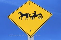 Horse and buggy image