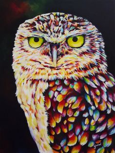 Portrait of an Owl Acrylic Painting by claudelle on Etsy