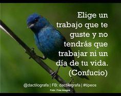 """""""Elige un trabajo que te guste y no tendrás que trabajar ni un día de tu vida"""". (Confucio) #Frases #Exito"""