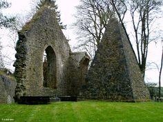 Ireland In Ruins: Kilcooley Abbey Co Tipperary
