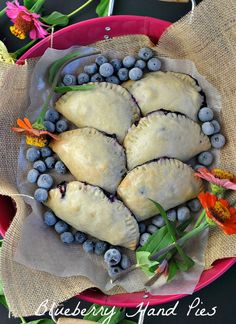 Blueberry Hand Pies @www.you-made-that.com