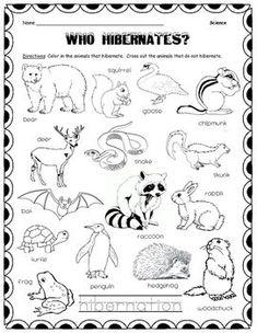 Hibernate? Or Migrate? sorting worksheet--{FREEBIE