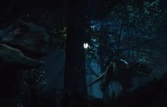 Share http://www.thevideographyblog.com/share/jurassic-world-dinosaurs/?share_image=http%3A%2F%2Fd3l9bzfuzkm13y.cloudfront.net%2Fwp-content%2Fuploads%2F2015%2F07%2FJurassic-World-by-Universal-Studios-14-0.jpg Jurassic World by Universal Studios Courtesy of Universal Studios  2015 Universal Studios All Rights Reserved