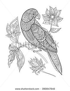 Coloring book page. Line art. Black and white vector illustration. Parrot with fantasy flowers . T-shirt design print. Digital Ink, Shirt Print Design, Wool Applique, Coloring Book Pages, Adult Coloring, Royalty Free Images, Line Art, Folk Art, How To Draw Hands