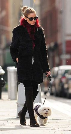Olivia Palermo takes pet pooch Mr Butler for a walk in New York City. Sporty Outfits, Fashion Outfits, Olivia Palermo Outfit, Dog Tumblr, Black Parka, Diy Dog Collar, Vintage Dog, Funny Dog Pictures, Cartoon Dog