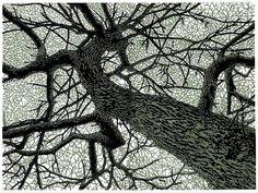 Nuesa dels arbres